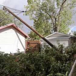 Gary Grubb looks at a power line that toppled into his neighbor's yard during a windstorm in Salt Lake City on Tuesday, Sept. 8, 2020. Grubb also lost two cottonwood trees that he planted in his yard 20 years ago.