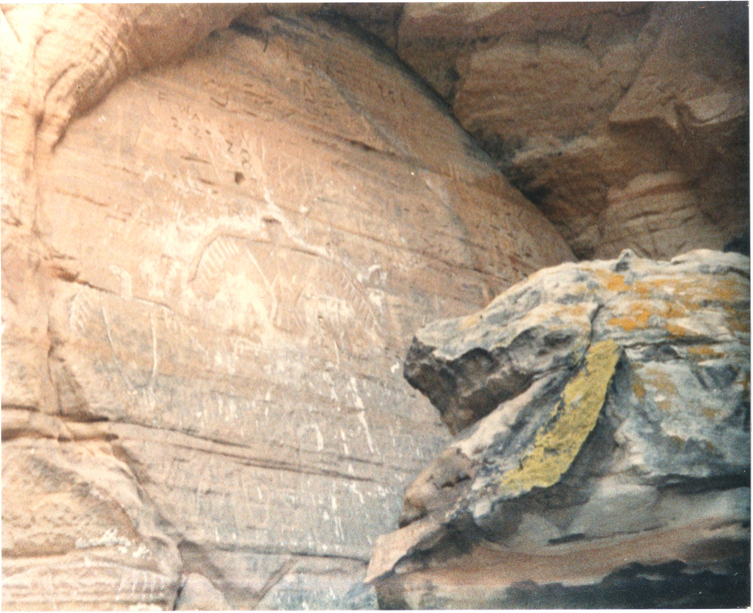 Thunderbirds carved in sandstone wall at Twin Bluff, Juneau County, Wisconsin, by prehistoric artist(s)