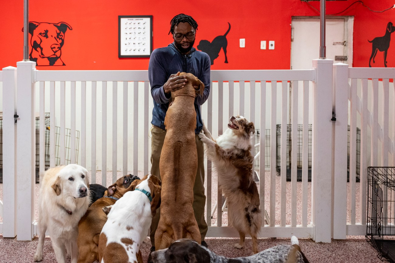 Pooch Purrfect owner Charwyn David in Clinton Hill sought help to secure a PPP loan.