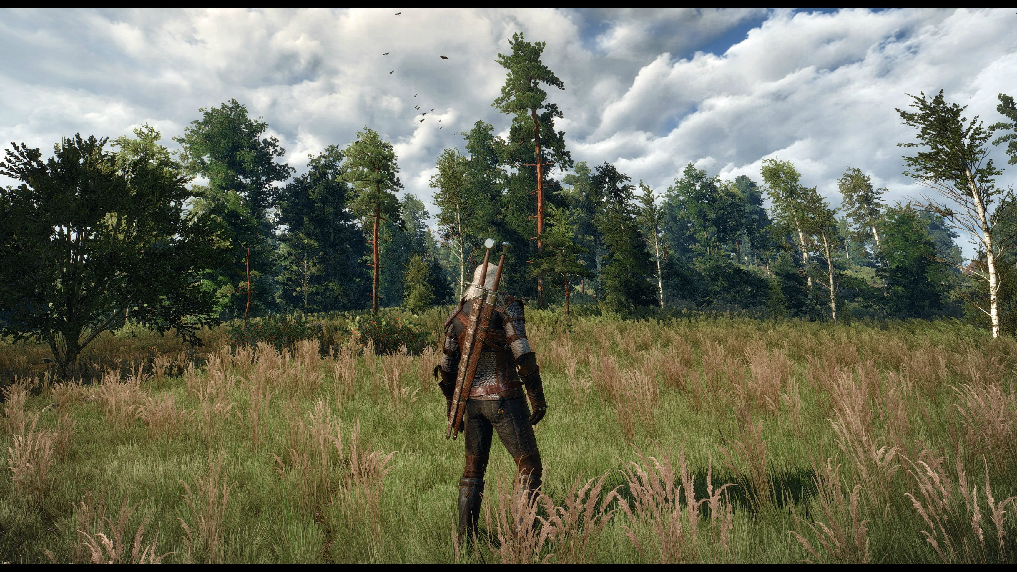 The Witcher 3 Looks Stunning At 4K With SweetFX 20