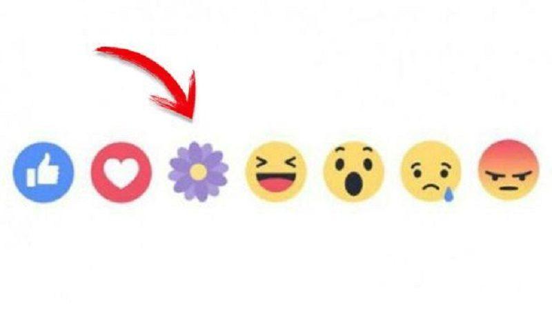 """¿Por qué Facebook desapareció la reacción """"Me enorgullece""""? - facebook-reactions-flawer-mothers-day-800x448"""