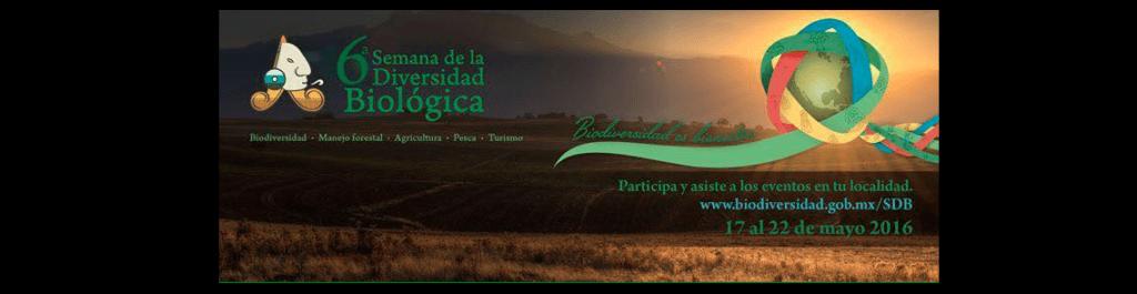 Nikon a favor de la biodiversidad en México - semana-de-la-diversidad-biologica