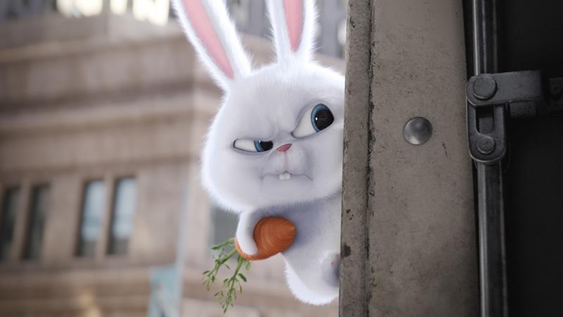 Conoce más de Snowball de La Vida Secreta de Tus Mascotas - snowball-la-vida-secreta-de-tus-mascotas