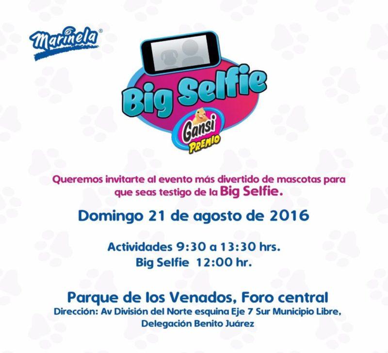 Big Selfie Marinela, evento con actividades dirigidas a los amantes de las mascotas - big-selfie-marinela_3-800x729
