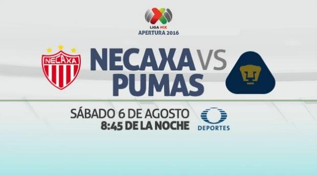 Necaxa vs Pumas, Jornada 4 del Apertura 2016 | Resultado: 2-2 - necaxa-vs-pumas-en-vivo-apertura-2016