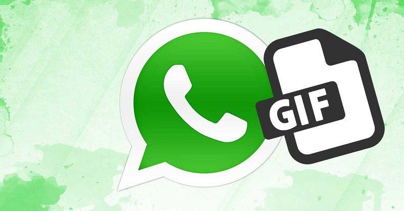 WhatsApp implementará un buscador de Giphy dentro de poco - whatsapp-a-800x418