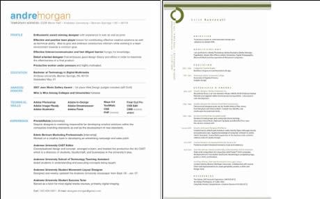 Ejemplos de curriculum - ejemplos-de-curriculum