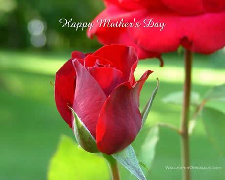 Feliz dia de las madres 2009 - dia-de-las-madres-2009
