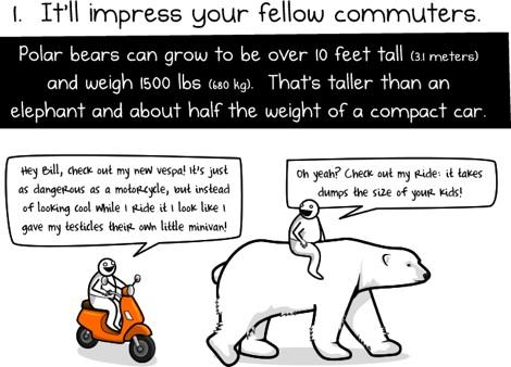 6 razones para montar un oso polar para trabajar Seis razones para ir en Oso Polar al trabajo
