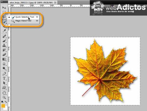 Crear tus propios pinceles en Photoshop - quick-selection-tool