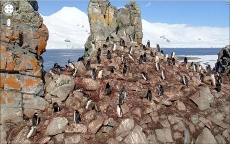 Google Street View llega a la Antártida - antartida-street-view