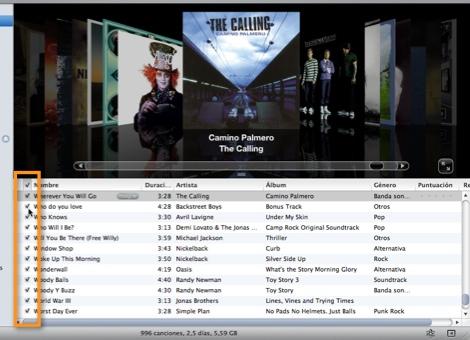 Como sincronizar música específica en tu iPod - seleccionar-canciones-itunes