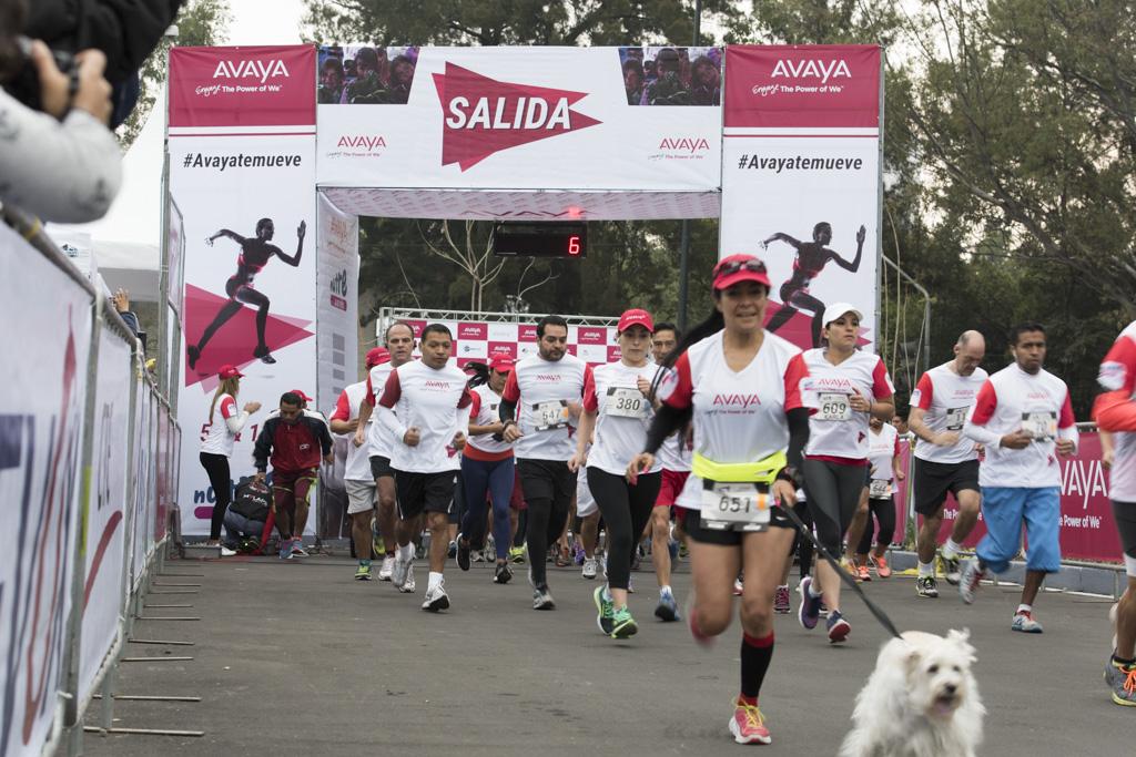 avaya carrera Avaya presenta los resultados sobre la Carrera Filantrópica Avaya 2015