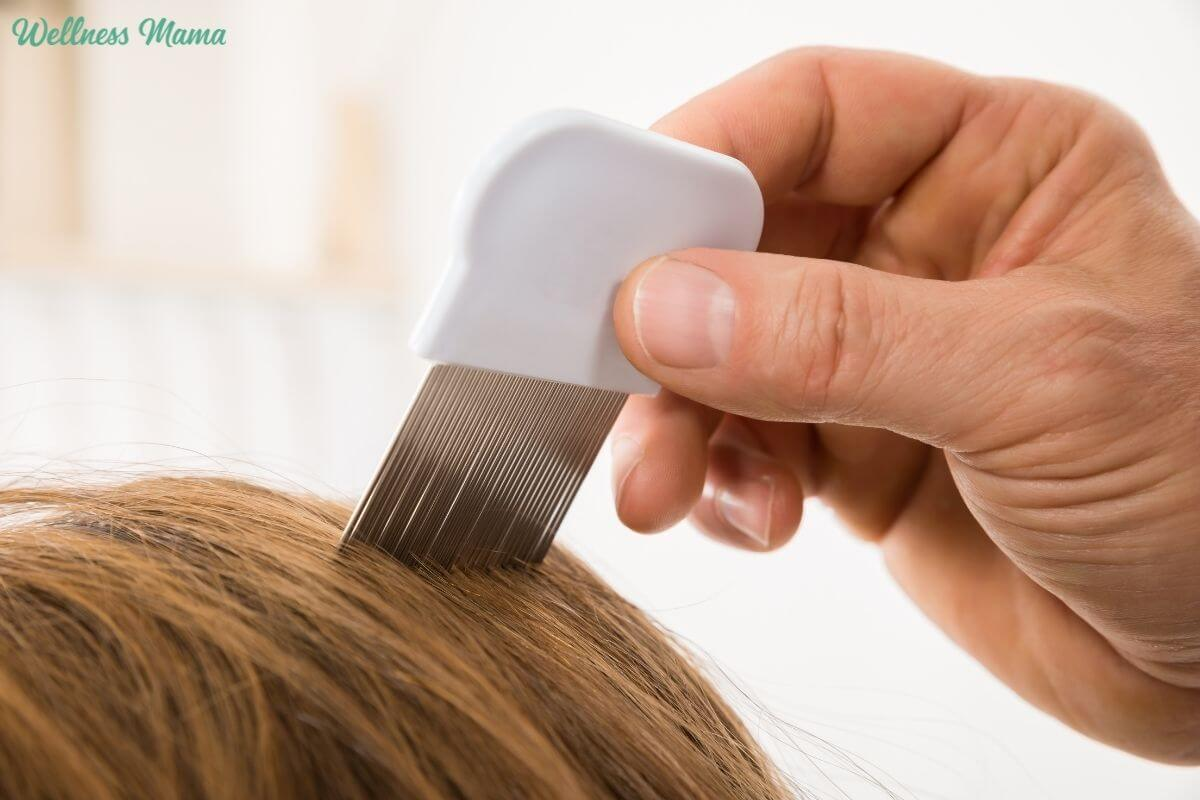 Natural Ways To Prevent Amp Get Rid Of Head Lice Wellness Mama