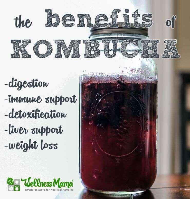 The benefits of kombucha digestion immune support detoxification weightloss