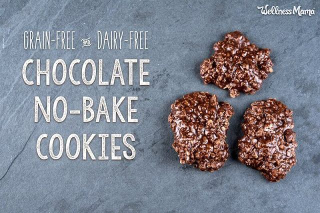 Paleo Coconut Chocolate No-Bake Cookies