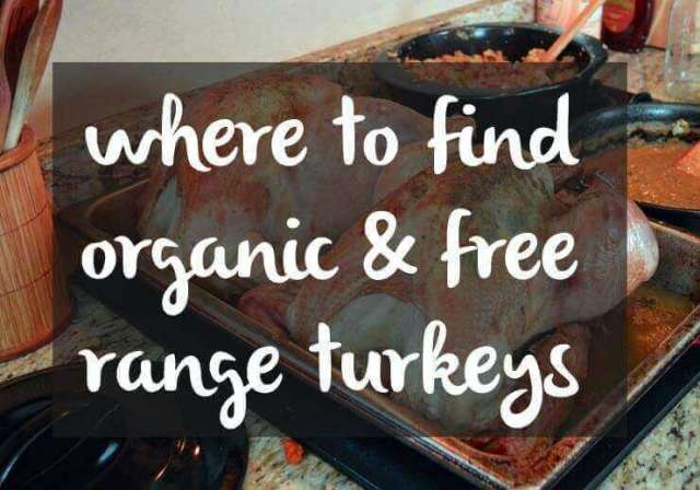 where to find organic and free range turkeys for thanksgiving