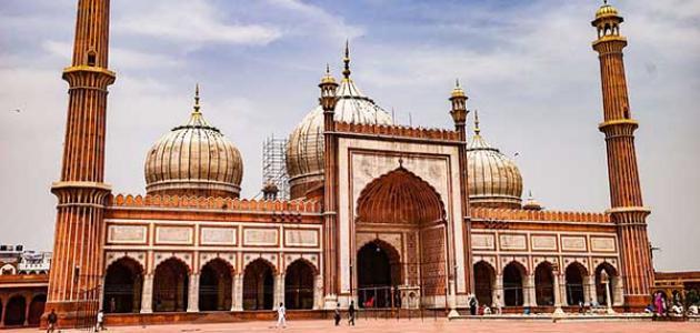 ما هي المذاهب الأربعة في الإسلام موسوعة وزي وزي