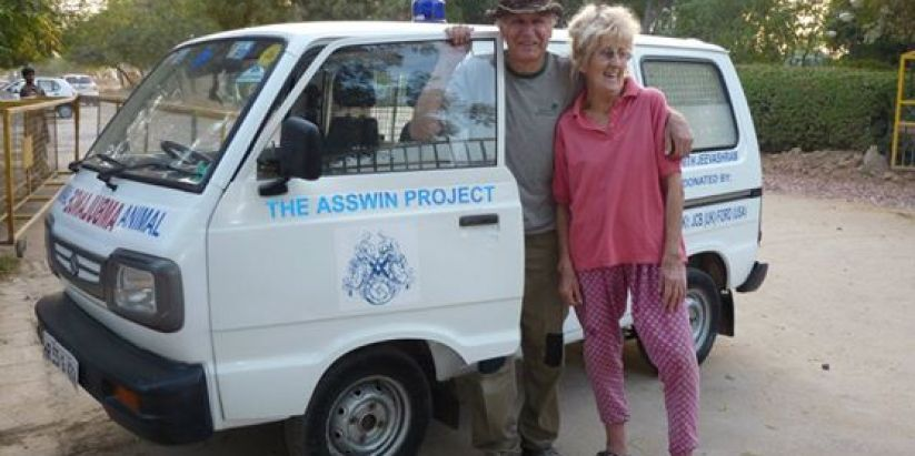 The Asswin Project