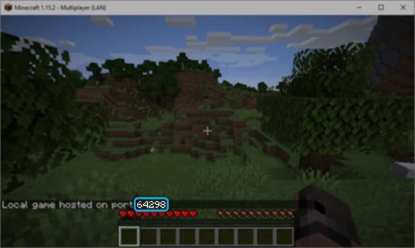 LAN game port number Minecraft
