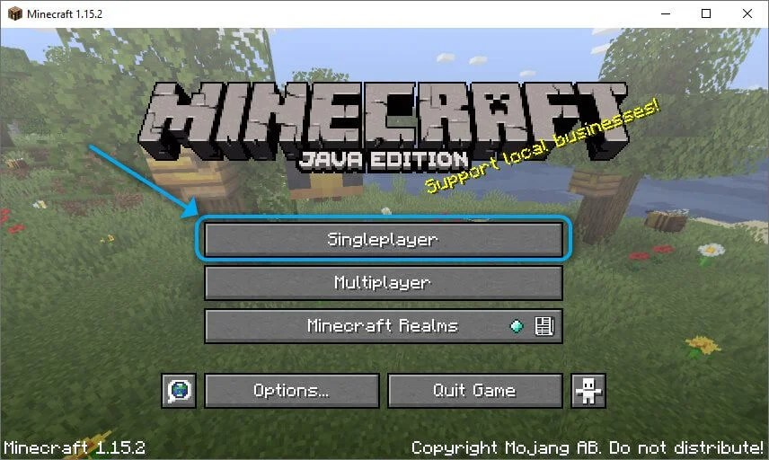 Singleplayer Minecraft