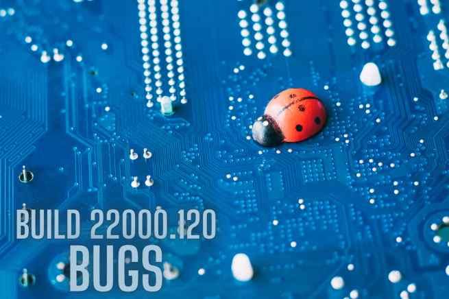 22000.120 bugs