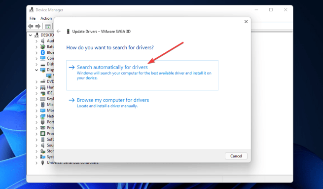 Search automatically for drivers option windows 11 valorant fps drops