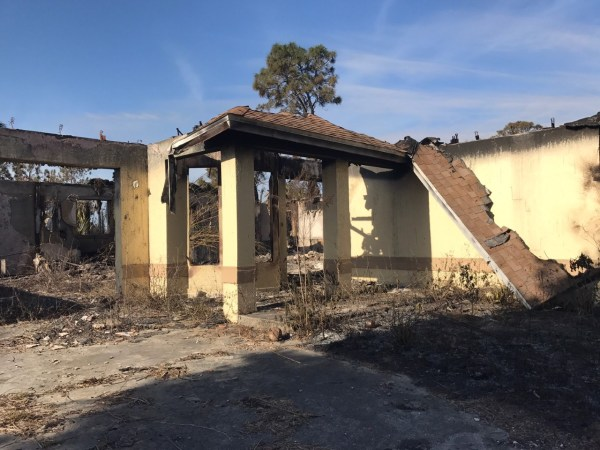 PHOTOS: Golden Gate Estates brush fires | WINK NEWS