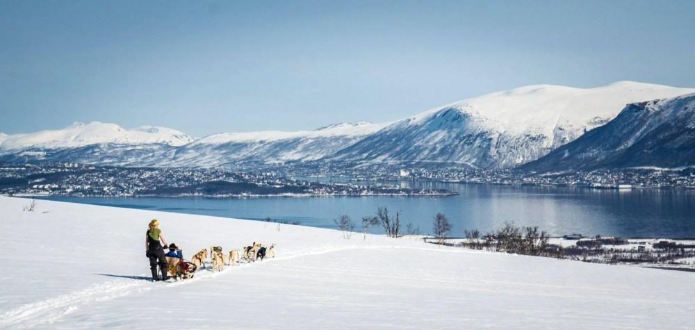 Een hondensleetocht in Tromsø is een leuke activiteit (Rowan Romeyn)