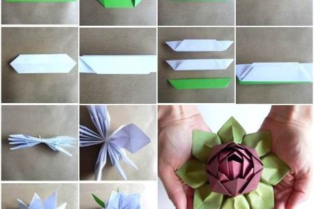 Origami flowers video new top artists 2018 top artists 2018 how to make easy origami flowers video instructions origami how to make easy origami flowers video instructions how to make easy origami flowers video mightylinksfo