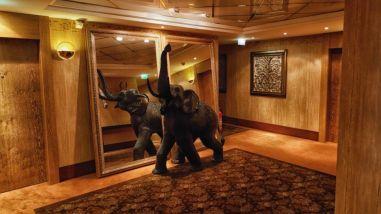 savoy-hotel-koeln-erfahrungsbericht-worldtravlr-net-45
