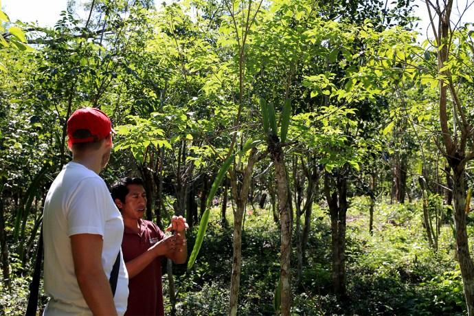 community_tours_sian_kaan_mexico_worldtravlr_net_7