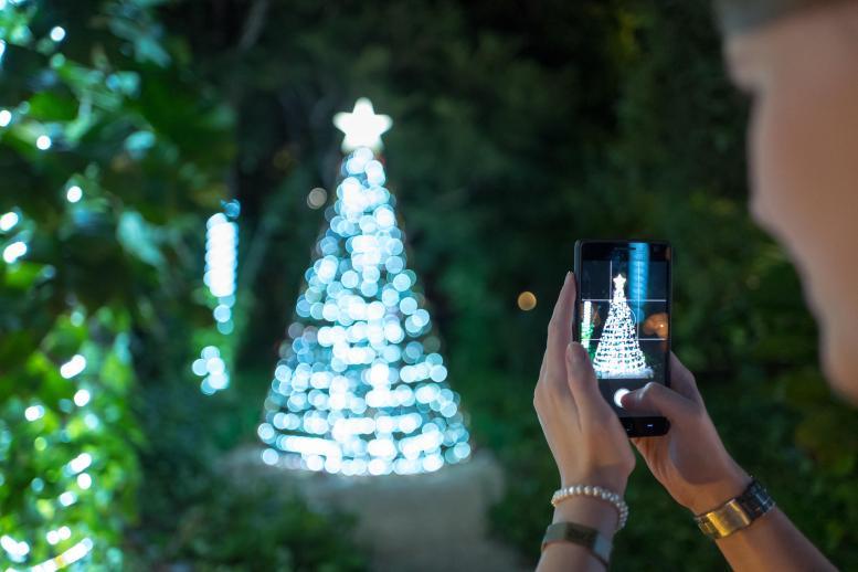 Wunderschöner Weihnachtsbaum vor der Lobby