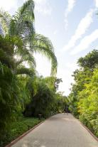 Wege im Sian Ka'an