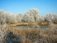 ostfriesland-im-winter-worldtravlr-net-1160221