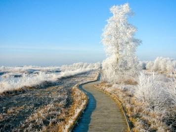 ostfriesland-im-winter-worldtravlr-net-1160243