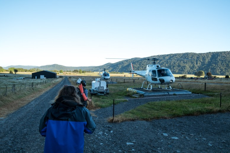 Flying Fox: Heli Hike, Fox Glacier, South Westland World Heritage Area, New Zealand