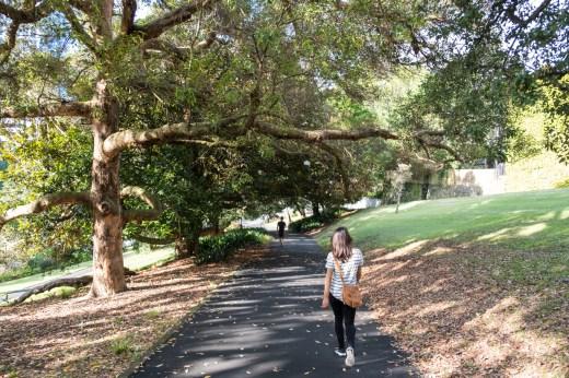 Auckland Albert Park