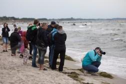 Canon Workshop für Sportfotografie auf Fehmarn