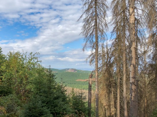 Wanderung Brocken - Höllenstieg