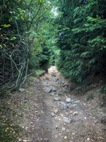 Wanderung Brocken - Heinrich-Heine-Weg