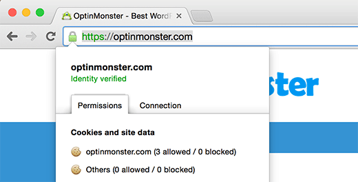 A site secured by HTTPs and SSL in WordPress