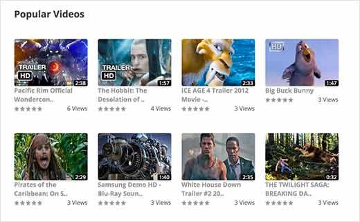 WordPress Video Gallery
