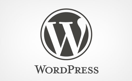 Giving back to the WordPress project