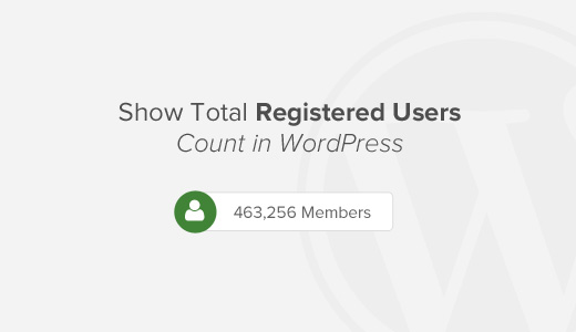 How to Show Total Number of Registered Users in WordPress