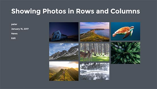 Display photos in rows and columns