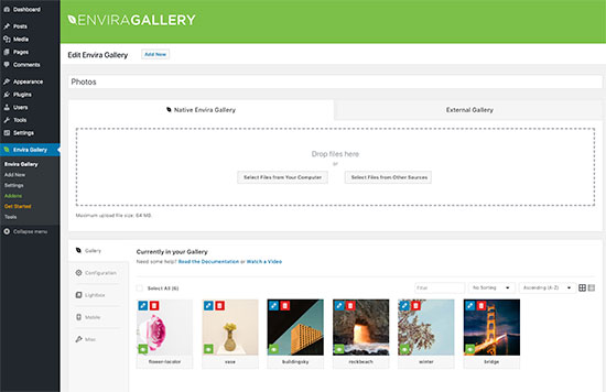 Envira Gallery user interface