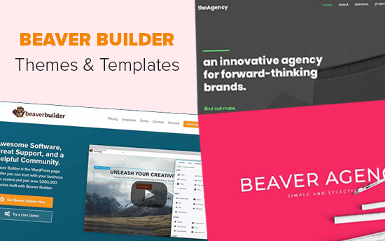 Beaver Builder Themes and Templates
