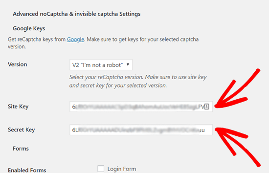 Masukkan Kunci Situs dan Kunci Rahasia untuk Menambahkan reCAPTCHA ke WordPress
