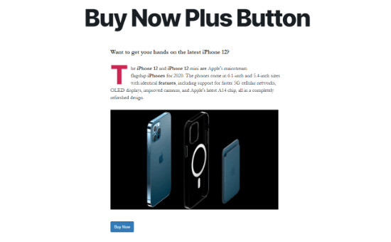 buy now plus button preview